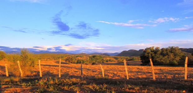 El departamento del Tolima, se ha caracterizado por su riqueza natural, reflejando paisajes extraordinarios. La belleza de sus tierras, contrasta con la perdida de liderazgo en el ámbito regional y […]