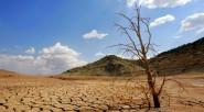 «El daño ambiental en el mundo será irreversible si no actuamos ahora»: Petro Ciudad del Vaticano El alcalde de Bogotá, Gustavo Petro, se refirió a la importancia de mitigar el […]