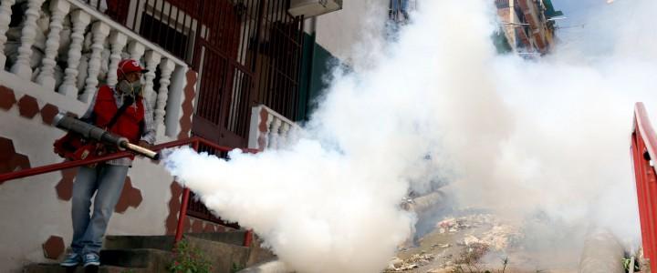 El Zika hizo presencia masiva en Cundinamarca. Las autoridades toman medidas para combatir al mosquito transmisor.FotoFausto Torrealba. Cundinamarca registra el ataque delvirus del Zika ha un total de 2.498 personas […]