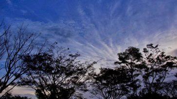 Nubes iridiscentes sobre La Mojana       Jorge Eliécer Rivera Franco Especial  El Bajo Cauca Antioqueño, hace parte de la Gran Mojana, territorios de especial […]