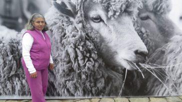 María Delfina Molina de Vanegas ha consagrado su bella vida campesina, a la cría de ovejas de las que se surte de lana virgen para tejer maravillosas prendas de vestir. […]