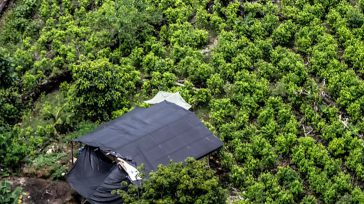 Un informe del Departamento de Estado de Estados Unidos reveló que Colombia mantiene las cifras de cultivos de hoja de Coca que tuvo en 2019 y 2018. Después de un […]