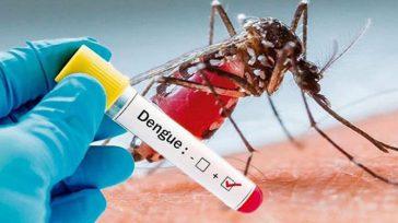 En Ibaguédurante el año2020 se han registrado más de 2.200 casos de dengue.   Juan Zuleta Ibagué Mientras la ciudadanía de Ibagué está en riesgo del coronavirus y el […]