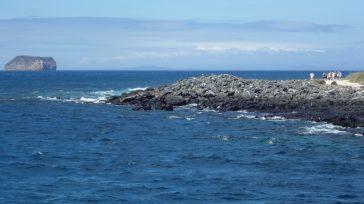 Parque Nacional GalápagosFoto: Alvaro Sevilla.     Orbedatos Agencia de Noticias ElParque Nacional Galápagoses uno de los lugares turísticos más atractivos de Ecuador y en su interior habitantortugas […]