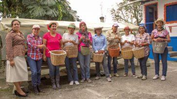 La caficultura no se habría podido desarrollar sin las mujeres.   Rafael Camargo Orbedatos «Las mujeres pagan mejor que los hombres, ahorran más que los hombres», dijo el presidente […]