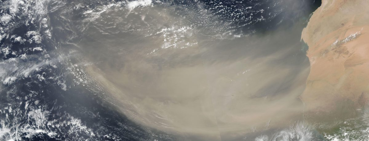 El desierto del Sahara es considerado el más grande del mundo, por lo que ocupa un espacio casi tan grande como el de China o los Estados Unidos.En este lugar, […]