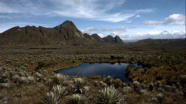 Confidencias: ALTA TENSIÓN¡Vamos a cuidar y defender nuestros páramos! Colombia es un maravilloso país bendecido con 50% de páramos del mundo. ¡Sin agua no hay vida!. invitamos a preservar nuestros […]