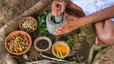 Especias que se preparan en el departamento del Chocó   Contribuyendo con innovación en sabores y nuevas técnicas para producir gran variedad de sazonadores y colorantes naturales, las empresas […]