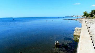 La ausencia del olor asalitre y de los chinchorros de los barcos.      Lázaro David Najarro Pujol Fotos del autor Con los pies desnudos Bienca Pujol […]
